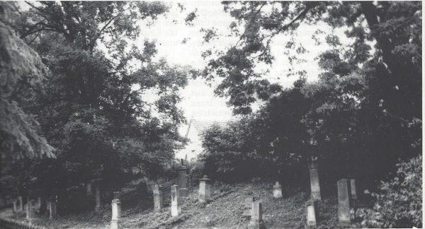 Der Judenfriedhof in Borgholz um 1990.